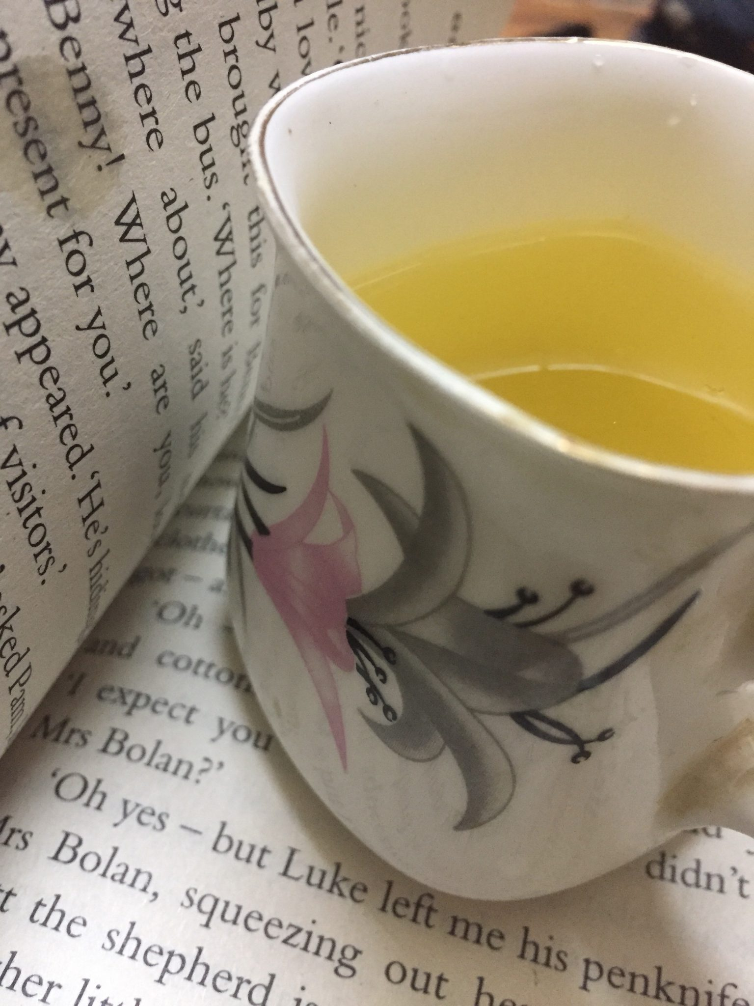 Refreshing and Healthy corn silk tea