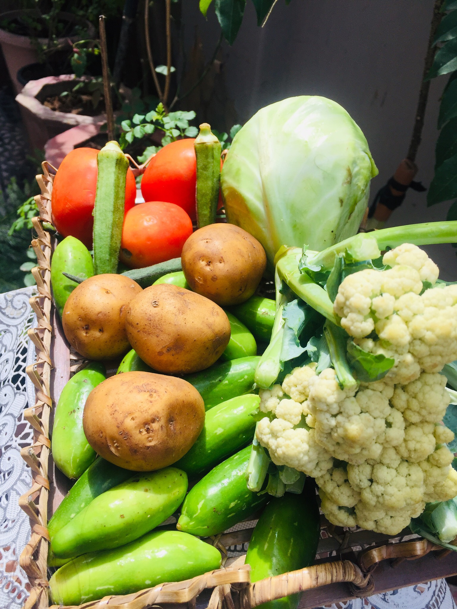 How to select and buy these 10 vegetables fresh?